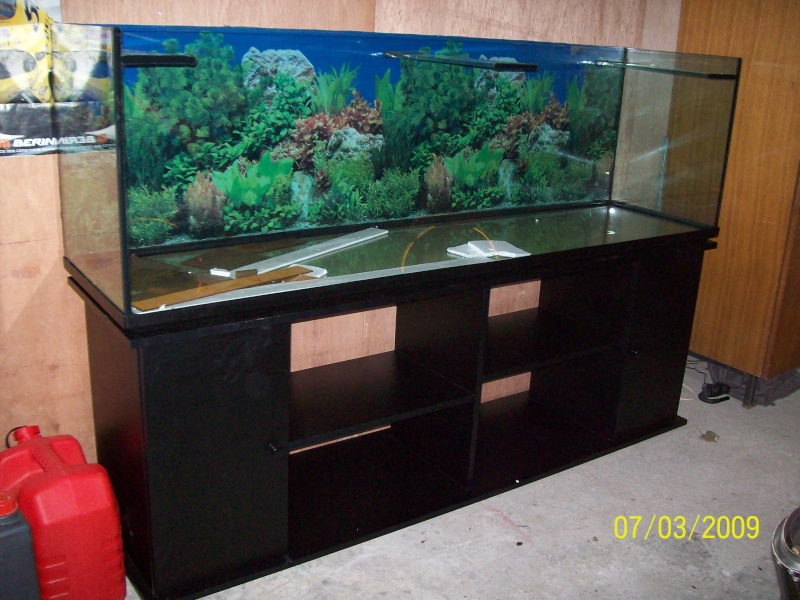 Vente occasion aquarium