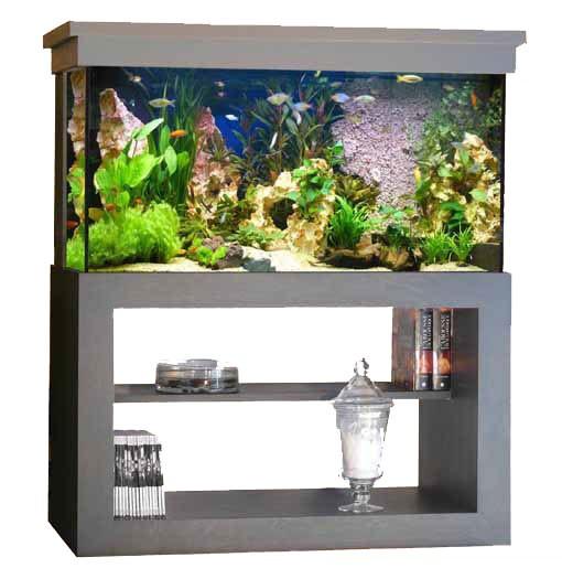 Acheter petit aquarium pas cher