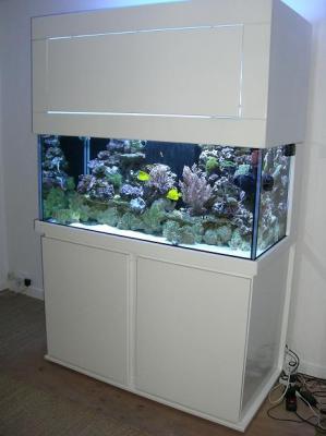 Aquarium à vendre