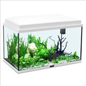 Aquarium chez gamm vert