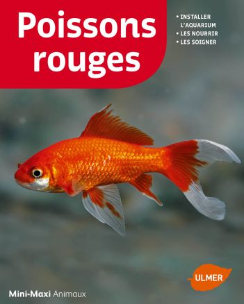 Prix poisson rouge jardiland