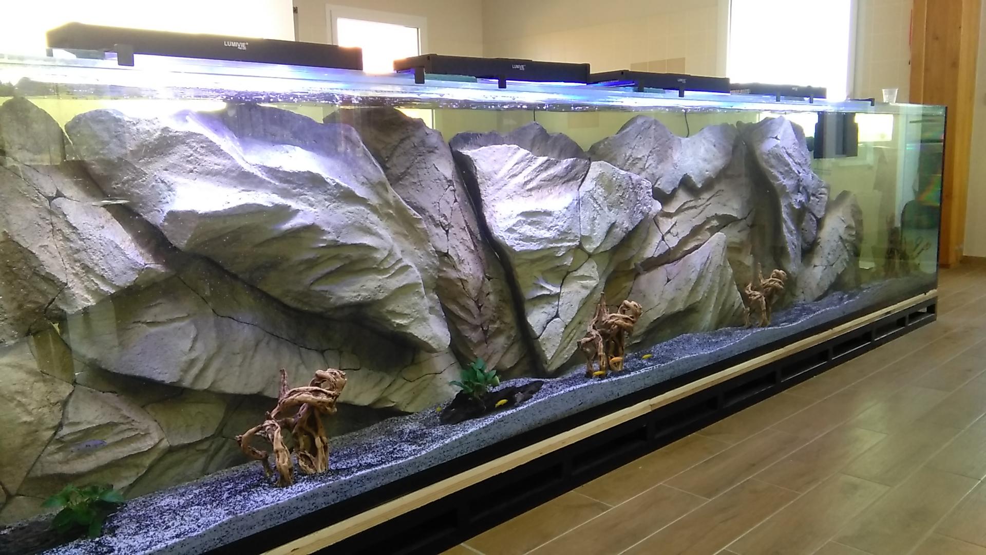 Magasin vente aquarium