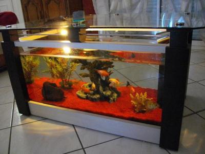 Vente aquarium occasion