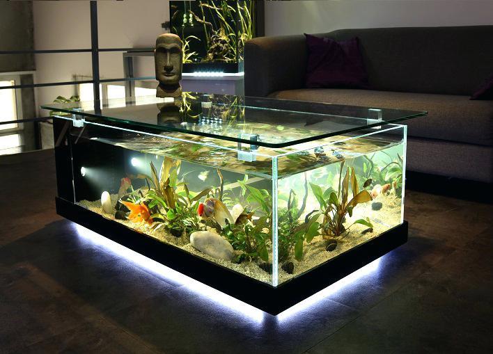 Aquarium meuble bois