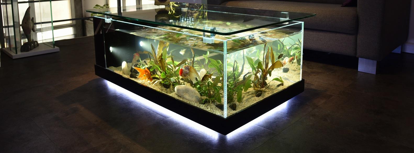 Aquarium mural a vendre