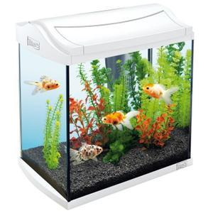 Aquarium 30l jardiland