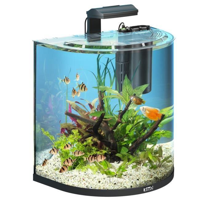 Petit aquarium pas cher