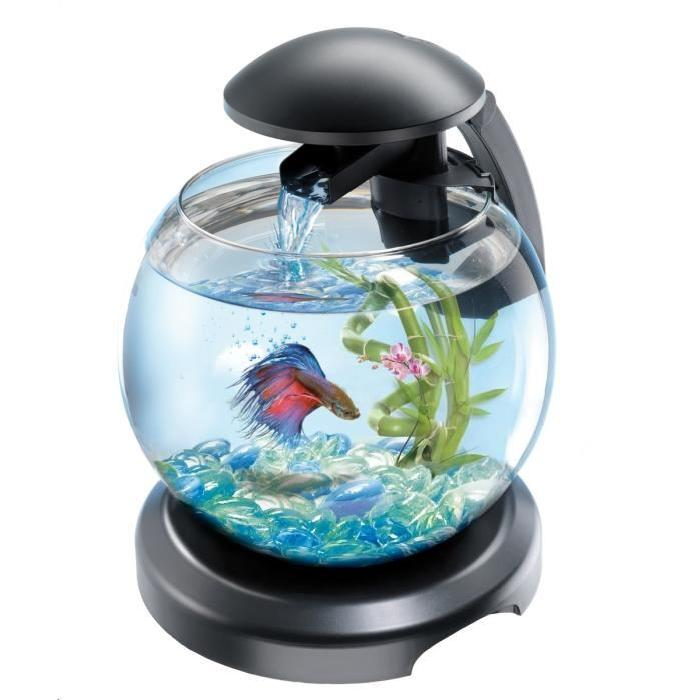 Prix aquarium boule